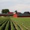 Mezőgazdasági munkás tanfolyam Jászalsószentgyörgyön