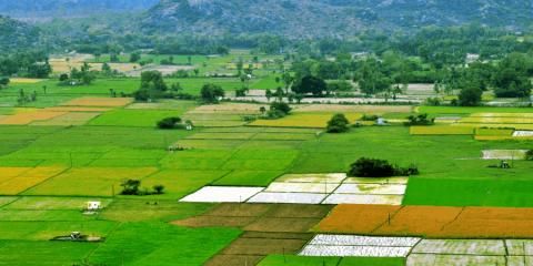 Mezőgazdasági munkás tanfolyam Jászberényben