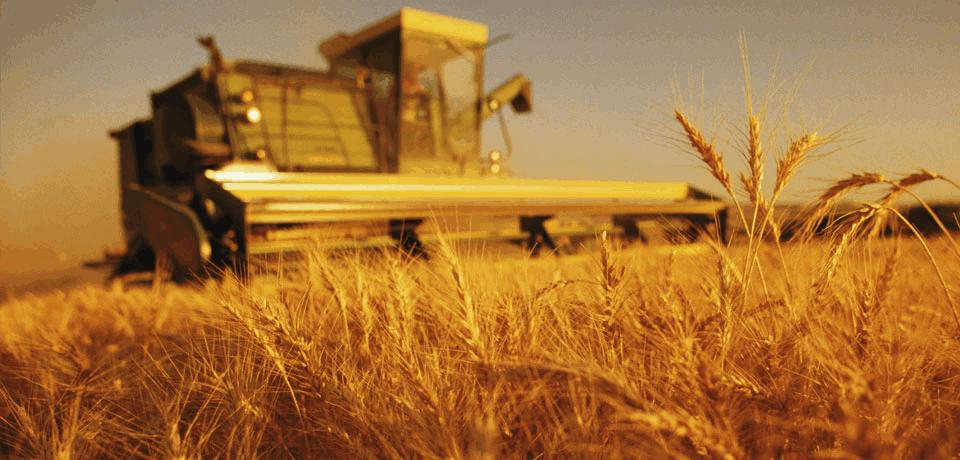 Mezőgazdasági munkás tanfolyam Duális Szak- és Felnőttképzés keretében